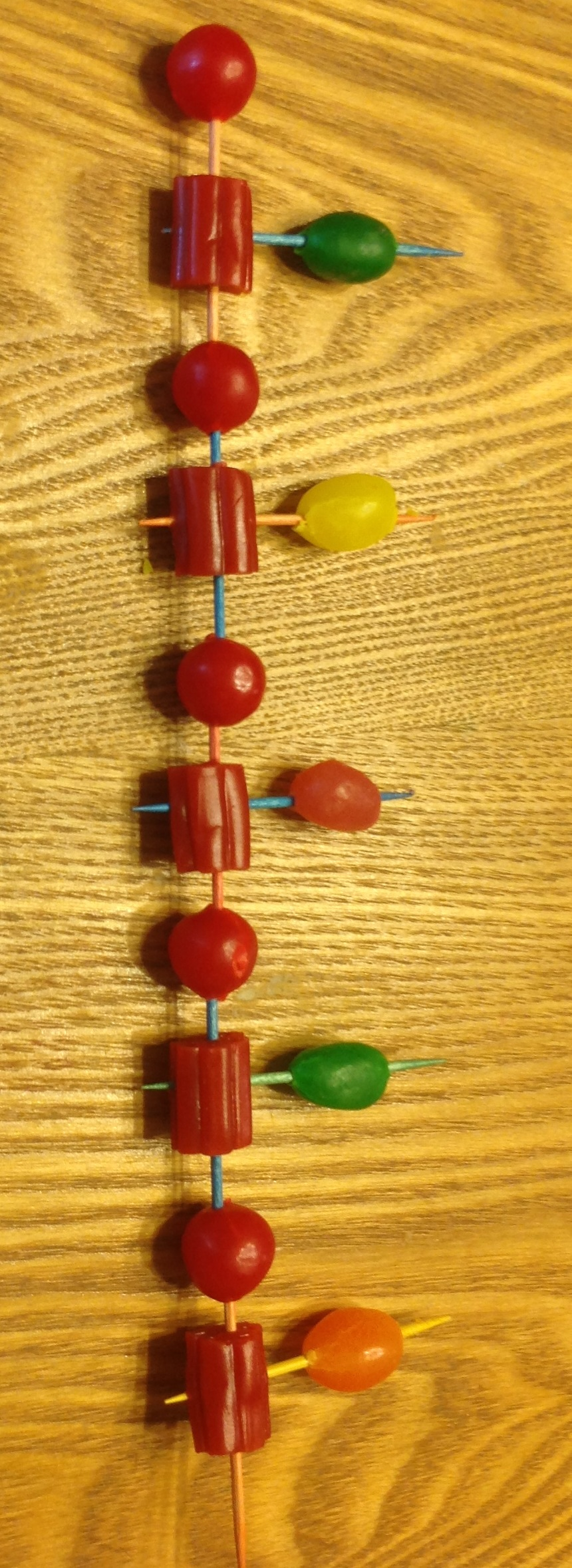 how to build a dna modelout of licorice